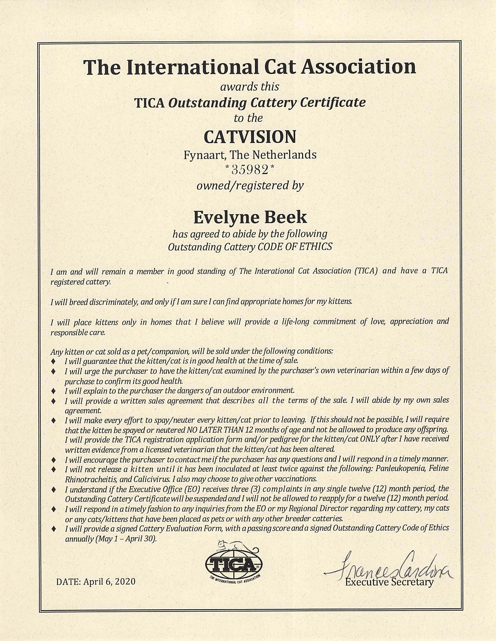 TICA outstanding cattery certificate