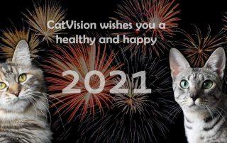 CatVision