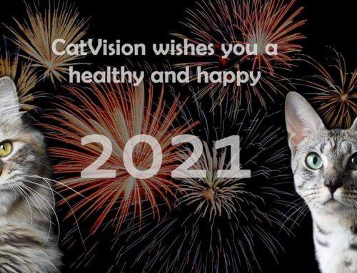 Wij wensen u het beste voor 2021