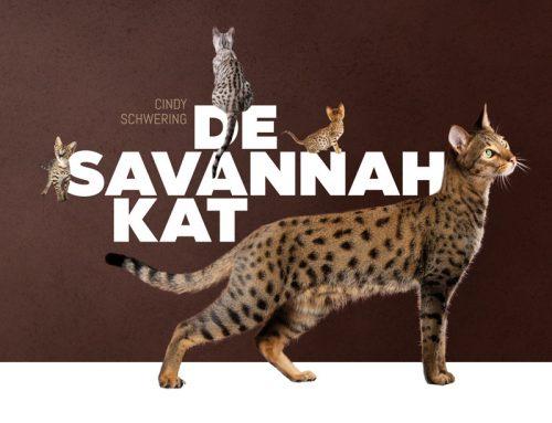 Boek over de Savannah kat